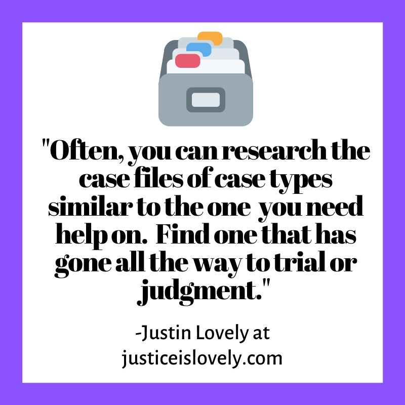 Often, you can research the case files of case types similar to the one you need help on.  Find one that has gone all the way to trial or judgment.