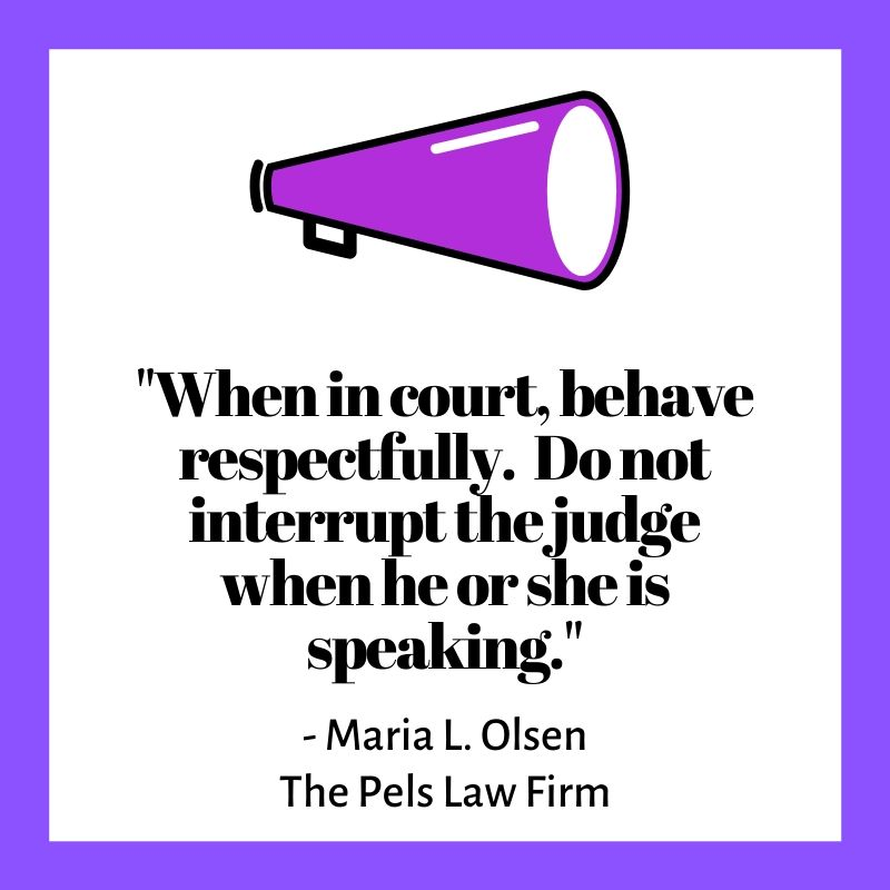 """When in court, behave respectfully.  Do not interrupt the judge when he or she is speaking."""