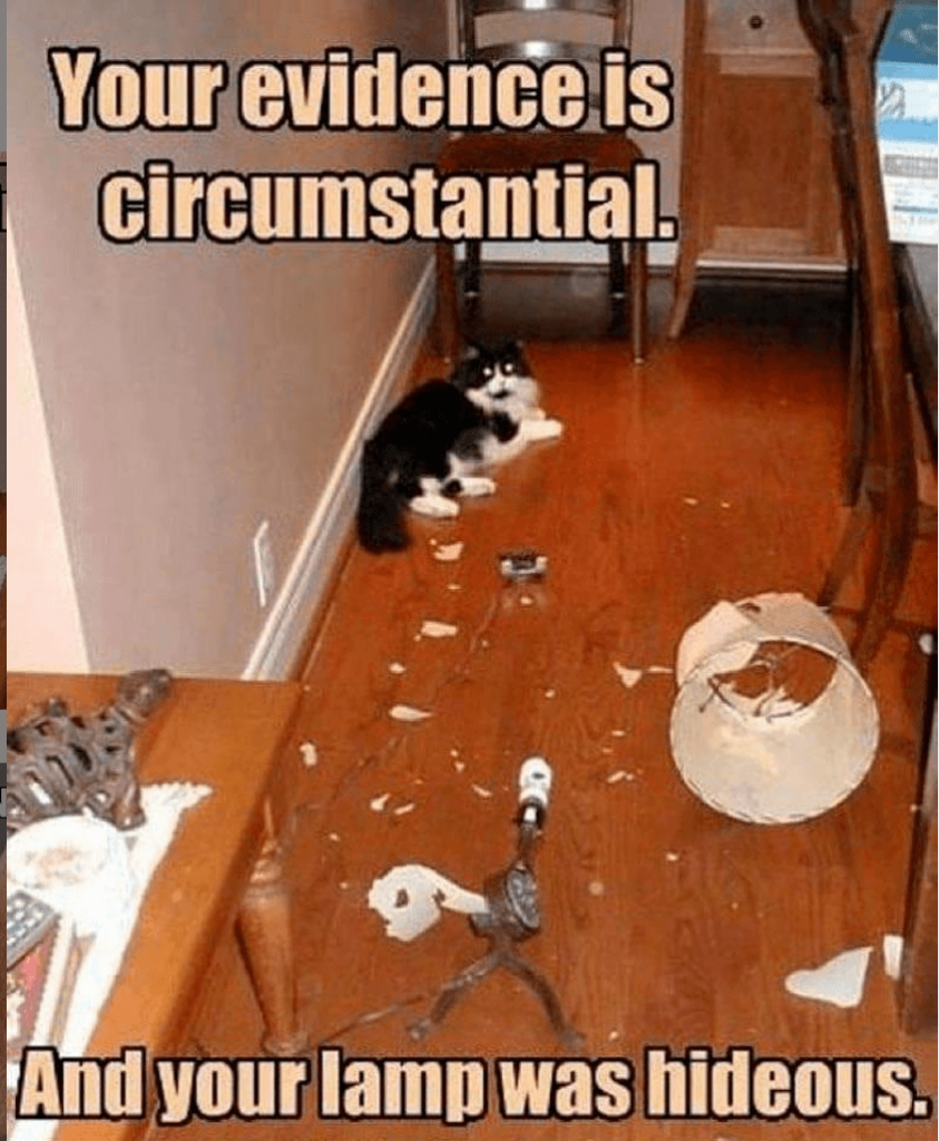 """Law Meme   Cats rule the internet. There's no question there. The proper use of """"circumstantial"""" in terms of evidence is much appreciated. However, I am sad that we have no idea if the lamp was hideous or not."""