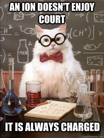 Courtroom Humor  This meme takes the classic science cat meme, and ads both a science fact, and a classy joke. Very well crafted,just a little too nerdy.