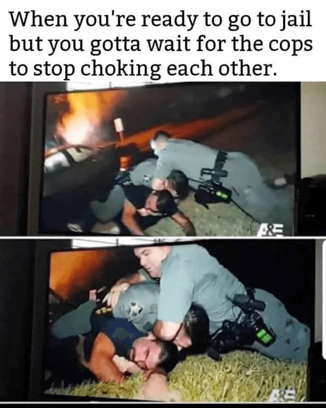 Category: Jail Meme Look, this is honestly so funny. I saw this and had a good laugh. And hey, the choke hold worked, the man they tackled has obviously given up. Maybe he decided to take it easy for the sake of the officers?