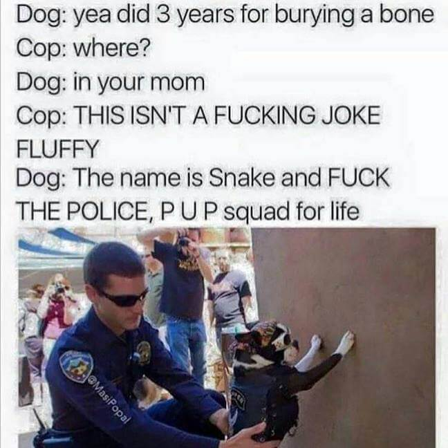 Category: PUP Squad 4 Lyfe PoliceMeme This doggo is a straight savage. And his name is Fluffy. I want to be friends with Fluffy.