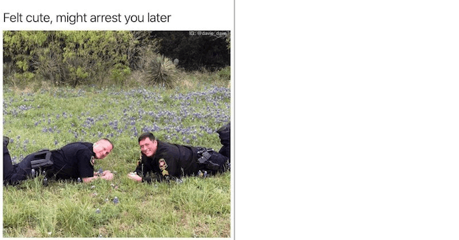 Category: Officer Meme This is a wholesome meme. It's yet another attempt from cops to seem more relatable. And honestly? I'm kind feelin' it.
