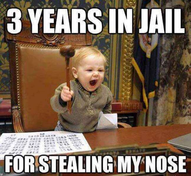 Category: Jail Meme Look, we have all wanted to see justice come to all of the nose thieves in the world, and we finally get to see it happen in this meme! Although I think 3 years is a bit light. As featured in out Courtroom meme review.