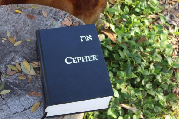 eth-Cepher Bible resting outside in the fall leaves.
